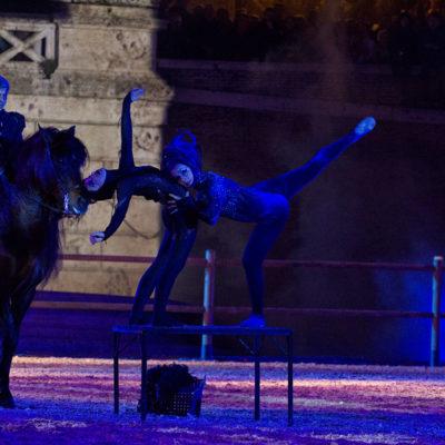 2012_spettacolo_i_cavalli_di_roma_285