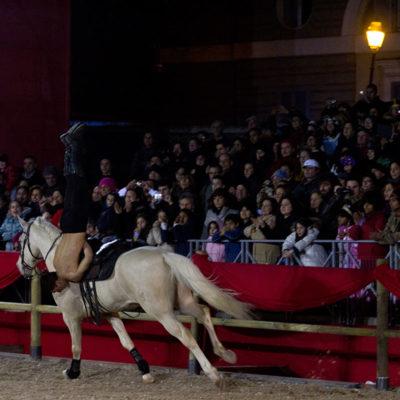 2012_spettacolo_i_cavalli_di_roma_290