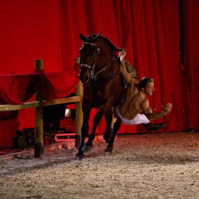 2012_spettacolo_i_cavalli_di_roma_291