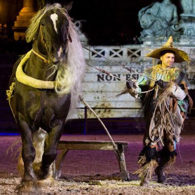 2012_spettacolo_i_cavalli_di_roma_299