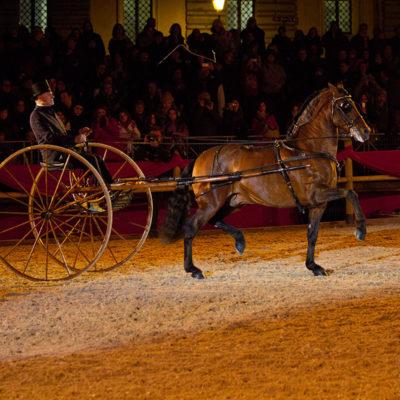 2012_spettacolo_i_cavalli_di_roma_30