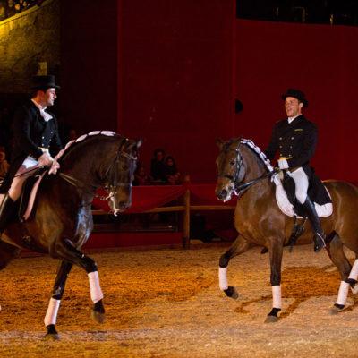 2012_spettacolo_i_cavalli_di_roma_302