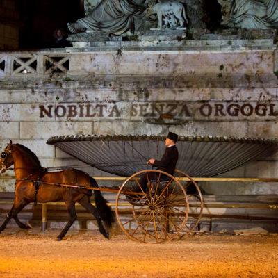 2012_spettacolo_i_cavalli_di_roma_32