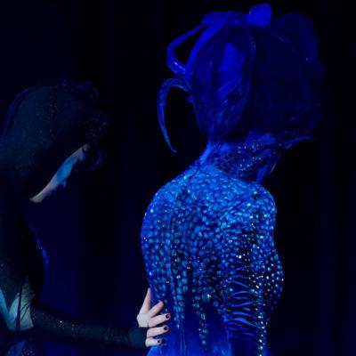 2012_spettacolo_i_cavalli_di_roma_4