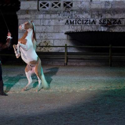 2012_spettacolo_i_cavalli_di_roma_40
