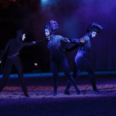 2012_spettacolo_i_cavalli_di_roma_51