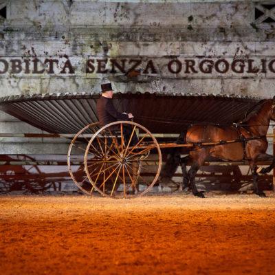 2012_spettacolo_i_cavalli_di_roma_69