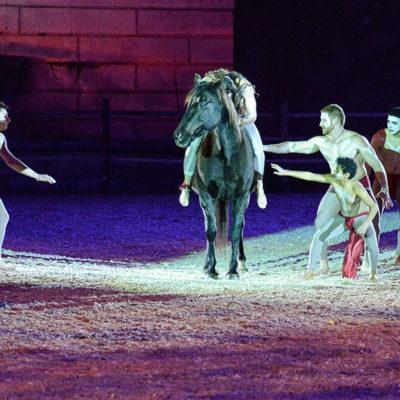 2013_spettacolo_i_cavalli_di_roma_125