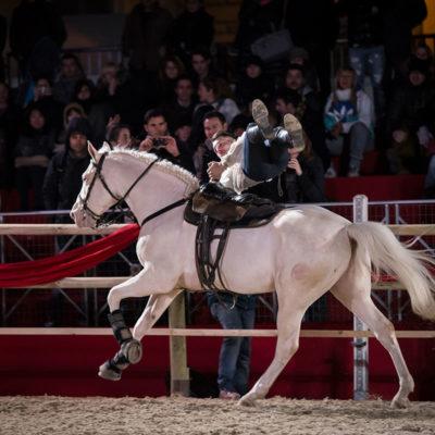 2013_spettacolo_i_cavalli_di_roma_171