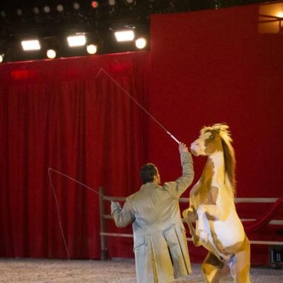 2013_spettacolo_i_cavalli_di_roma_210