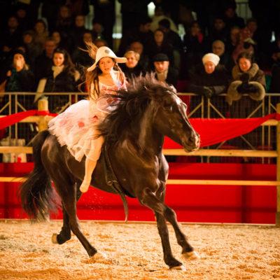 2013_spettacolo_i_cavalli_di_roma_262