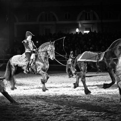 2013_spettacolo_i_cavalli_di_roma_68