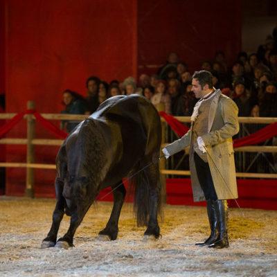 2013_spettacolo_i_cavalli_di_roma_9