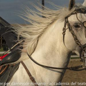 2019_10_20 Memorial Mauro Perni 15. Edoardo Boldrini & Saverio Razzano_DSC8793